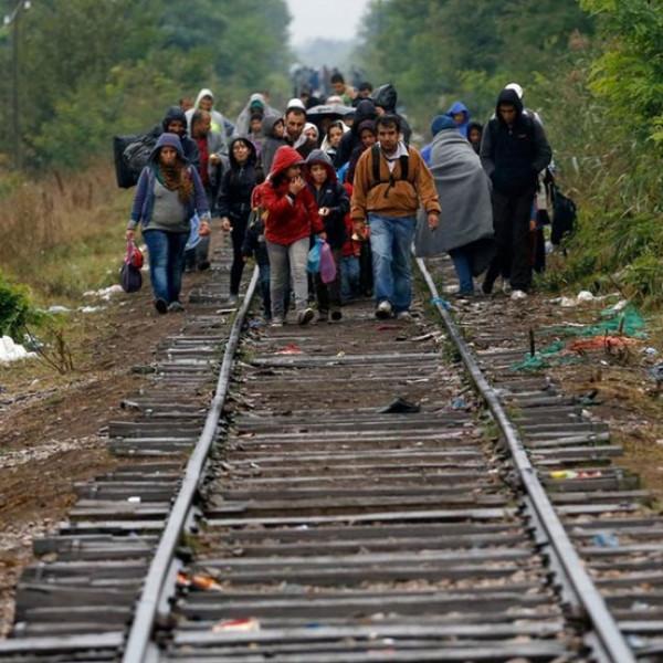 Olaszországban nagyszabású nyomozás indult illegális migráció elősegítése miatt