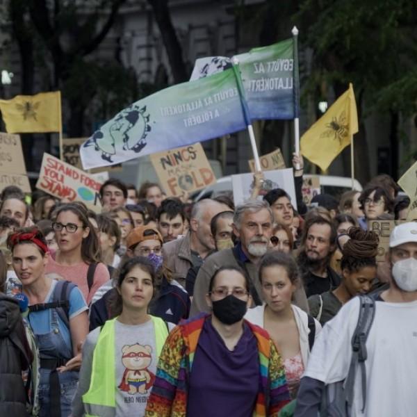 Greta magyar rajongói vergődtek ma a belvárosban - Fotók
