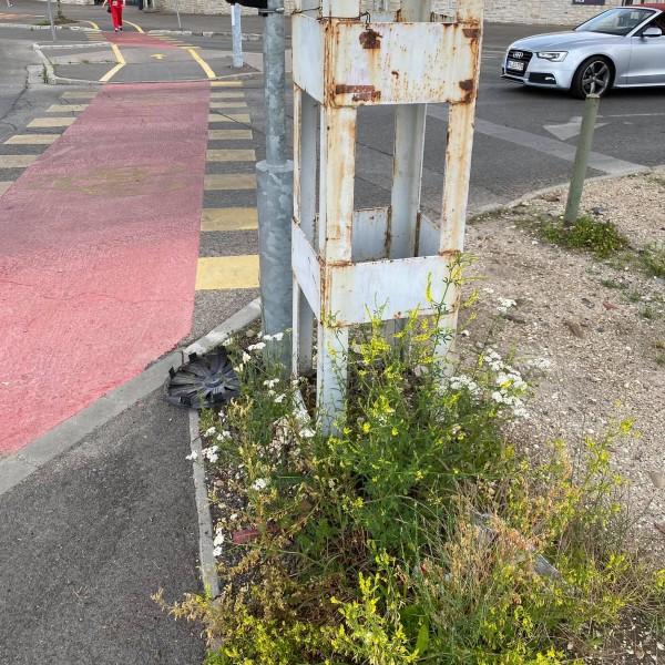 Szégyen! Budapest két méteres gazzal várja a Puskás Arénához a szurkolókat