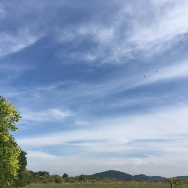 Folytatódik a nyárias idő, 29 fok is lehet
