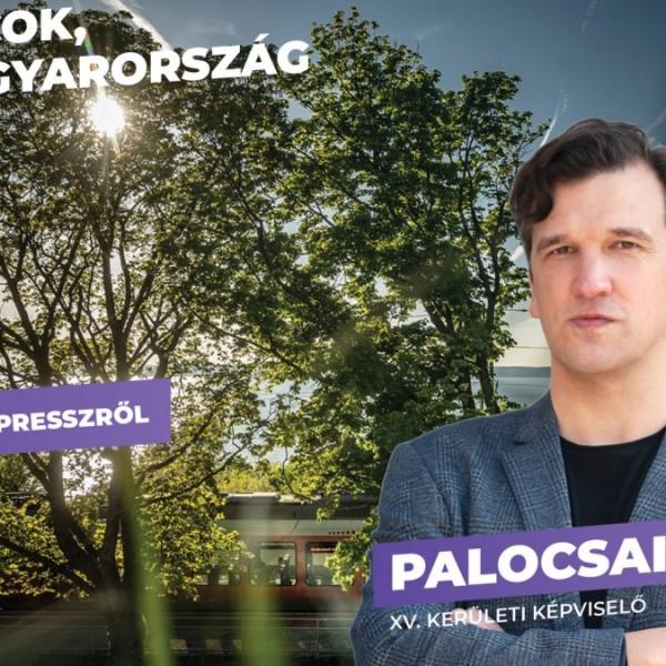 Momentumos politikus: A pályára szivárványzászlóval befutó néző a szerdai nap hőse