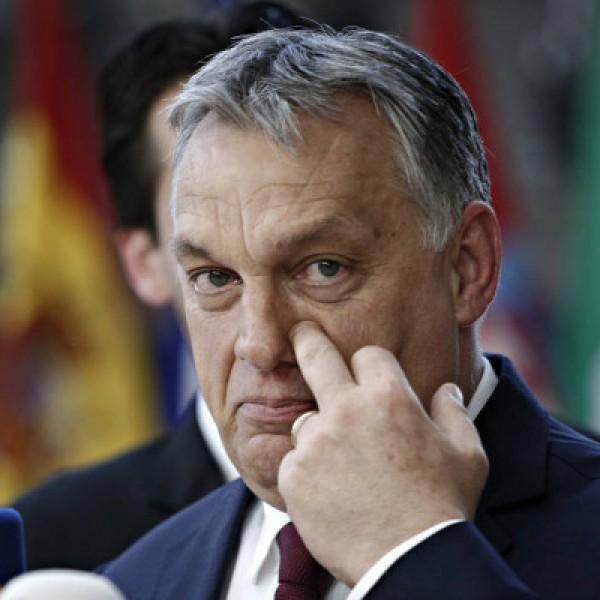 https://www.vadhajtasok.hu/2021/04/19/az-europai-konzervativok-frakciojahoz-csatlakozott-a-fidesz