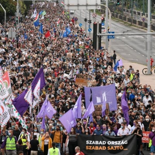 Lötyög a moslék: A Momentum szerint a Jobbiknak elnézést kell kérnie a mosléktól