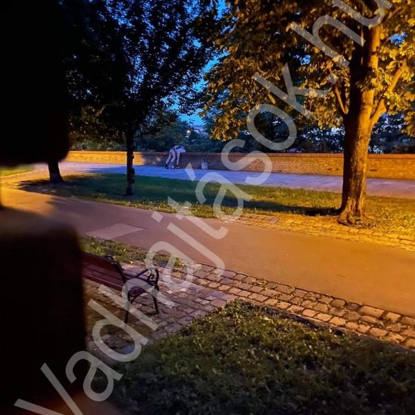 Undorító: Így basznak a Várban a sétányon a szutykok (Képek)