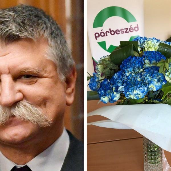 Szabó Timi befogta a pofáját ma, Kövér küldött neki virágot, ezen meg kiakadt