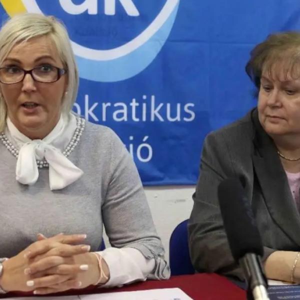 Pofátlanul hazudik a székesfehérvári DK-s: dokumentumok bizonyítják, hogy egy offshore cég képviselője és tulajdonosa